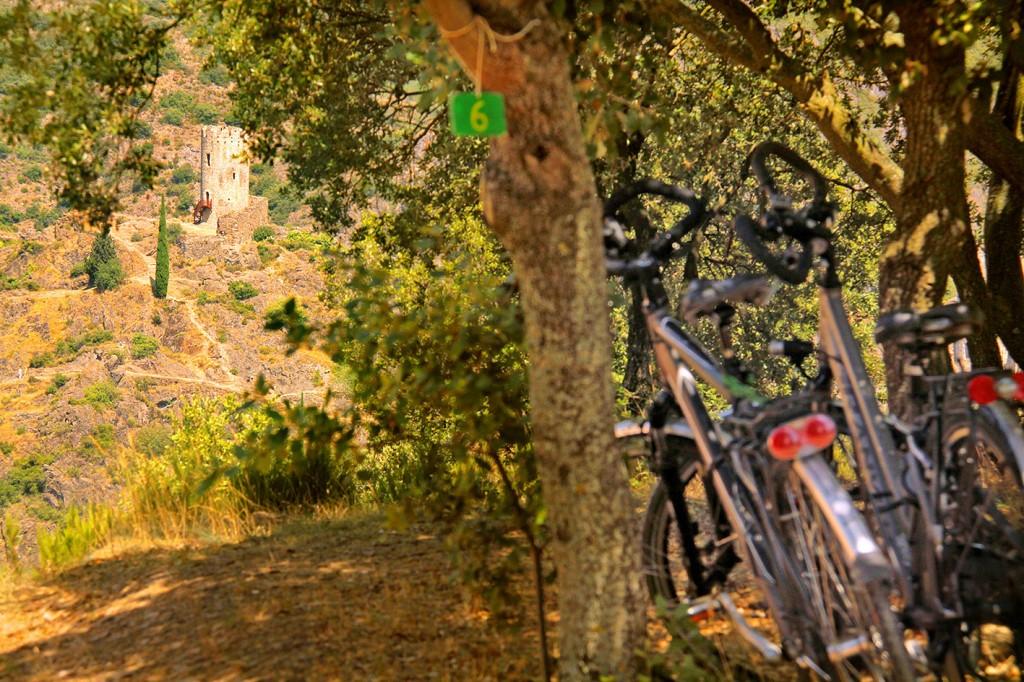 CampingBelvedere140563-J